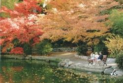 Lithia Park - Ashland, OR