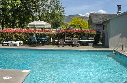 pool - summer